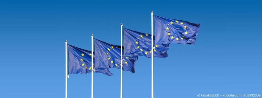 Präferenzen: Alternative Präferenzregeln im Pan-Euro-Med-Raum