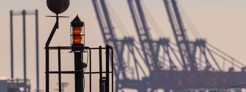 Warenursprung: Einführungsfrist des REX wegen Covid-19 verlängert