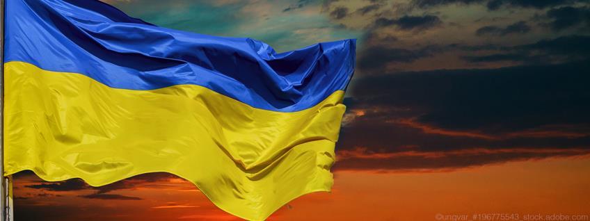 Zoll: EU erhöht Zollkontingente für Geflügel aus der Ukraine
