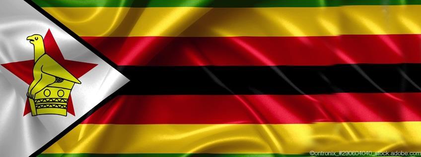 Zoll: Simbabwe übernimmt System des registrierten Ausführers (REX)